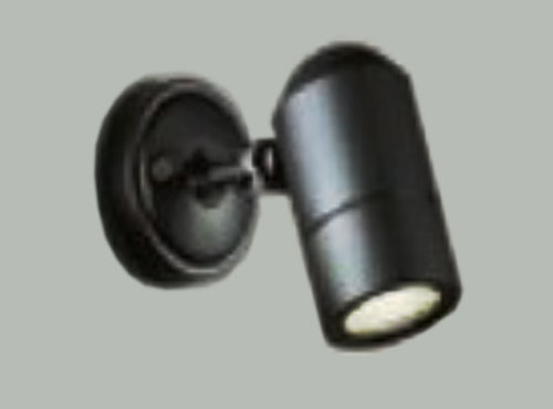 den-spotlight-2