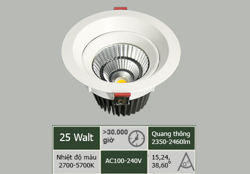 DL-SW25