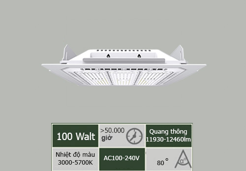 âm-100